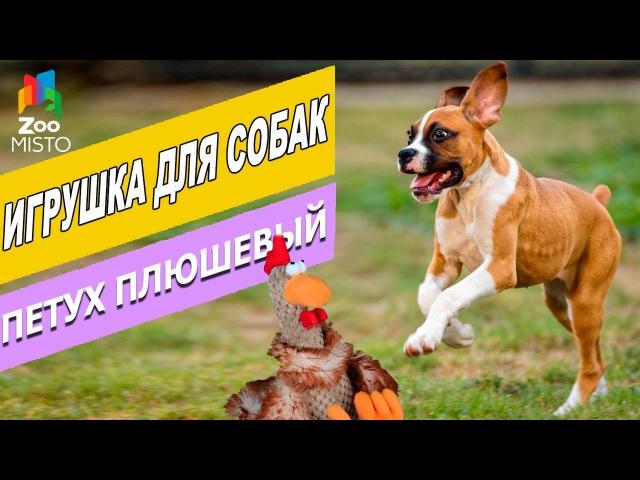 Игрушка для собак Петух Плюшевый Трикси | Обзор игрушки для собак | Trixie Rooster - Dog toy ...