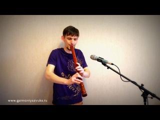 Гармония звука - Сякухати в До из палисандра