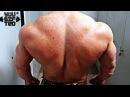 Ваша ширина задние дельты Тренировка плеч от Ивана Рослякова