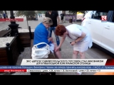 Экс-депутат Симферопольского горсовета стал виновником ДТП в пешеходной зоне крымской столицы Прогулка с риском для здоровья. На