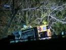 У США розбився автобус з першокласниками.