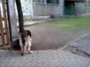 Video-2014-05-11-10-37-21