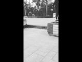 pablo_varchuk_17526695_1274467545977333_2561937963315363840_n.mp4