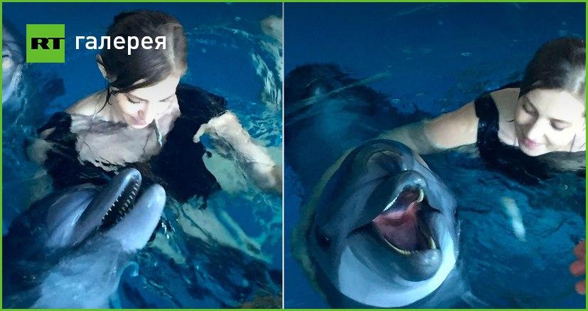 В соцсетях опубликованы фотографии Поклонской, плавающей в бассейне с дельфинами