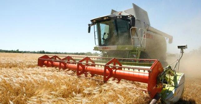 ЮФО в 2016 году прибавил в промышленности и сельском хозяйстве