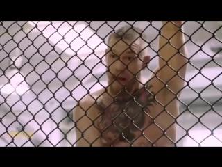 Дерзкие выходки Конора МакГрегора на пресс конференции с Эдди Альварезом UFC