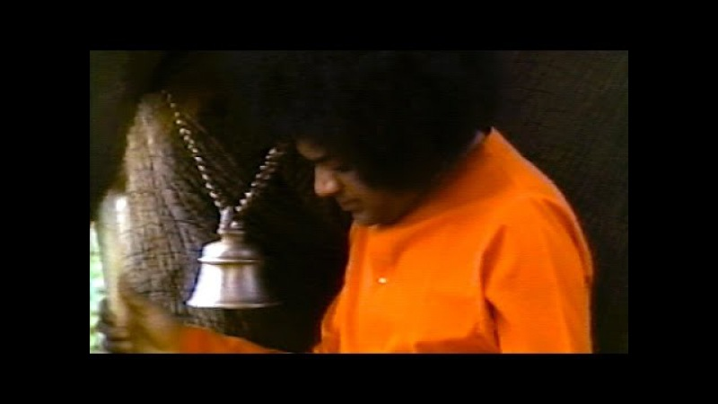 Sai Love 163 - The Purest Devotion
