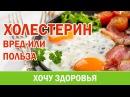30 Холестерин часть 1 Вред или польза Анна Котельникова