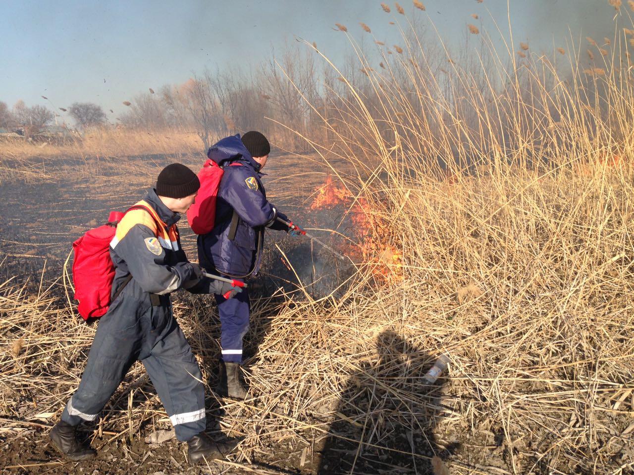 Таганрог и Неклиновский район лидируют по количеству и площади загораний сухой растительности
