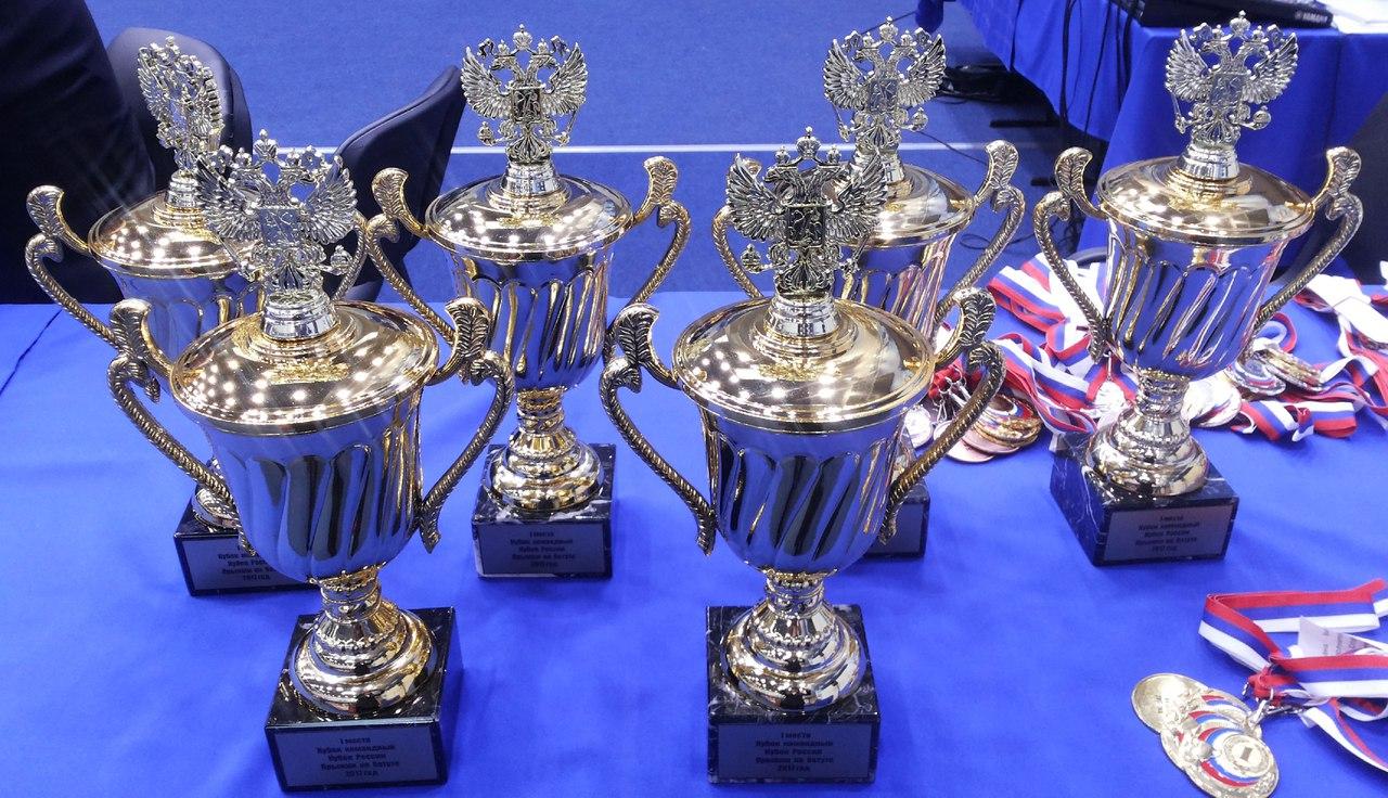Таганрогские батутисты вернулись с Кубка России по прыжкам на батуте с серебряными и бронзовыми медалями