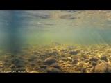 Рыбалка на истоке Печоры, хариус