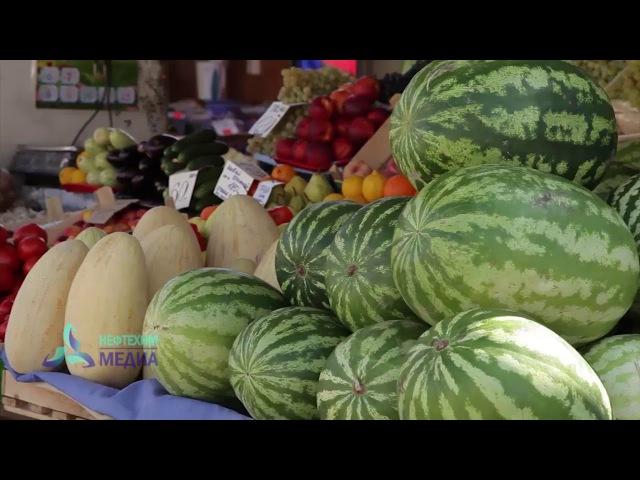 Отравления арбузами и грибами - телеканал Нефтехим (Нижнекамск)