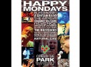 Cities in the Park 1991 Happy Mondays, Electronic, A Certain Ratio....Etc
