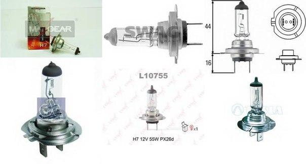 Лампа накаливания, основная фара; Лампа накаливания, противотуманная фара; Лампа накаливания; Лампа накаливания, основная фара; Лампа накаливания, противотуманная фара для BMW Z4 купе (E86)