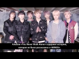 [RUS SUB][27.02.17] BTS Message for WINGS Extended: