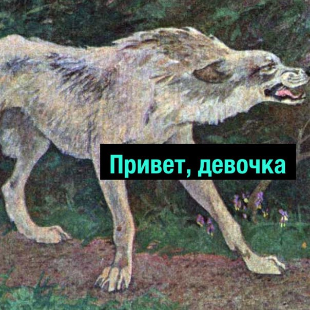 Фото №456245874 со страницы Михаила Кравцова