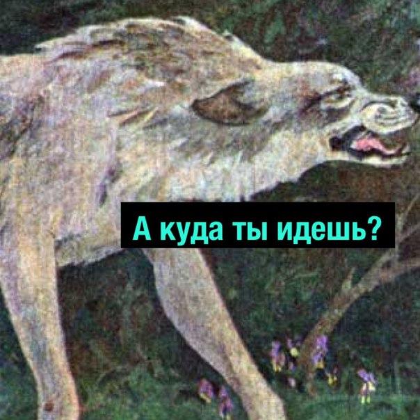 Фото №456245876 со страницы Михаила Кравцова