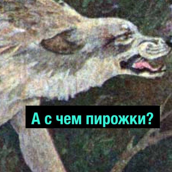 Фото №456245880 со страницы Михаила Кравцова