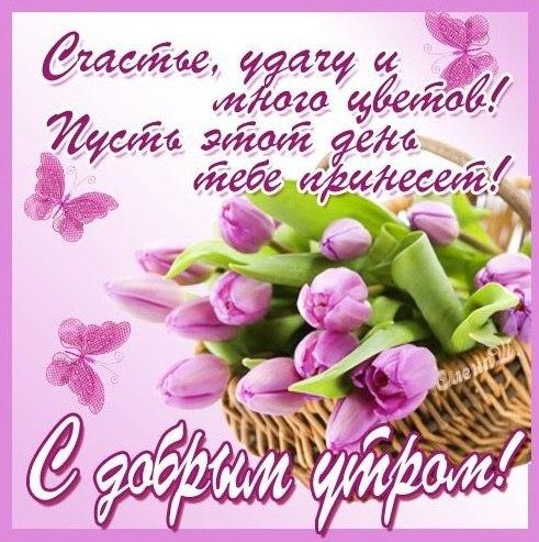 https://pp.userapi.com/c836223/v836223719/441c2/ToImI5JVSbQ.jpg