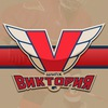 Хоккейная школа -  «Виктория»
