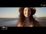 Dennis Pedersen feat. Cassandra Grey - Painting Summer (Original Mix) Emergent Skies