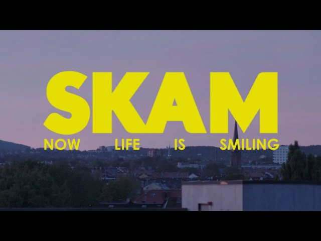 A tribute to SKAM