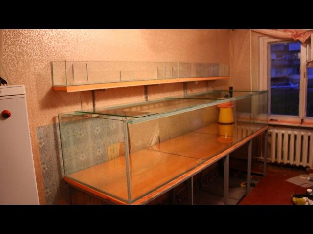 Один день с аквариумпермь.рф №6(13.05.2017) Аквариум на 1300 литров в Чайковском,Природ ...