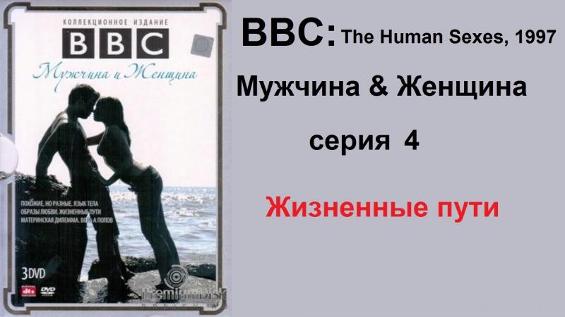 BBC: мужчина и женщина (4 серия). Жизненный пути