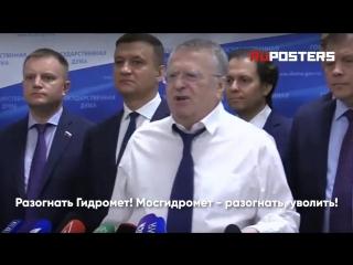Промокший Жириновский потребовал разогнать весь Гидрометцентр