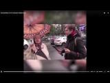 БАБУЛЯ ПОДВЕЛА ИТОГИ ВЫБОРОВ В РОССИИ 10 .09. 2017