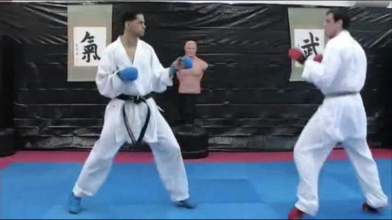 6. Jab - Front Leg Round Kick