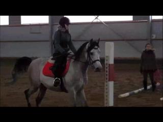 | Соня Марко Поло | - тренировка от 24.02.17