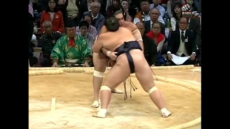 Kyushu Basho: Days 01-03 (2014)