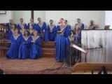 Жизнь-поле - Мария Глубоченко, акк. Елена Васильченкова (О. Вельгус)
