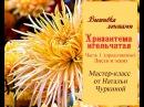 Мастер-класс Хризантема игольчатая от Натальи Чуркиной. Часть 1 (продолжение). Листья и эскиз