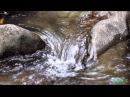 АНЖЕЛА МАРКОВА ЕСЛИ Б Я БЫЛА РЕКОЙиз фильма У реки два берега МОНТАЖ ГАЛИНА ЗНАМЕНСКАЯ