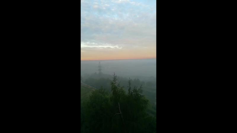 Утренний туман в Подмосковье