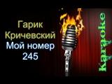 Гарик Кричевский - Мой номер 245 ( караоке )