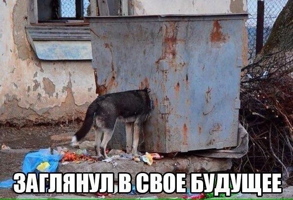 Юрий Андров |