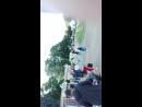 Парк Сокольники. Танцы