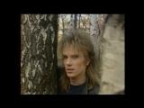 Кони в яблоках - Электроклуб (Виктор Салтыков) 1988