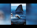 Открытое море (2003) | Open Water