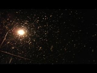 Снег крошится кружится с небес на землю падает зимой вечером в городе