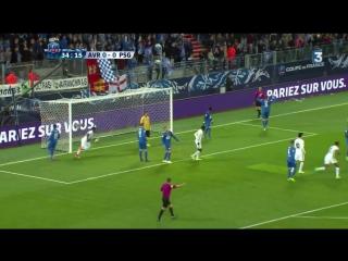 Потрясающий гол Бен Арфа в четвертьфинале Кубка Франции