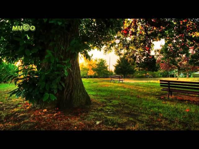 Rondo Veneziano - Musica Fantasia (Best World Instrumental Musics 2015 1080p HQ) Mu©o