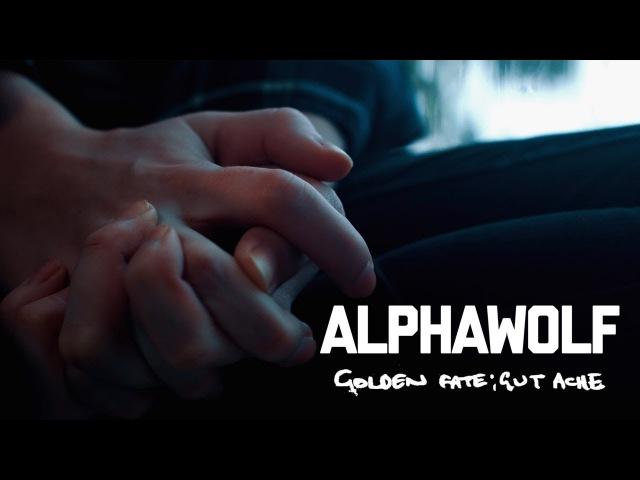 Alpha Wolf - Golden Fate Gut Ache (Official Music Video)
