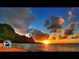 Reggae Ziggy Marley - Beach In Hawaii