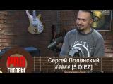 PRO Гитары - Сергей Полянский