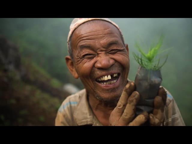 Tentree Nepal