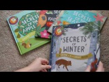 Usborne Shine a Light Books- Among the Best!!